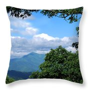 Overlook On The Pisgah Trail Throw Pillow