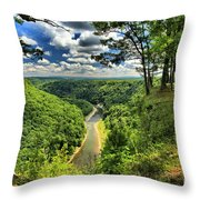 Overlooking The Genesee Throw Pillow