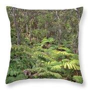 Overlooking The Rainforest Throw Pillow