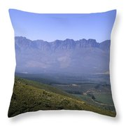 Overlooking Vineyards Throw Pillow