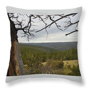 Overseeing The Canyon Throw Pillow