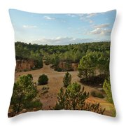 Overview Of Ludo From The Cliffs Throw Pillow