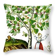 Ovids Pyramus And Thisbe Myth Throw Pillow