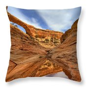 Owachomo Reflected Throw Pillow