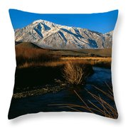 Owens River Valley Bishop Ca Throw Pillow