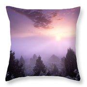 Owhyee Canyonlands Throw Pillow