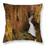 Owhyee River Throw Pillow
