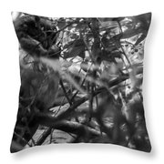 Owl-1-bw Throw Pillow