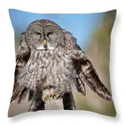 Owl 4 Throw Pillow