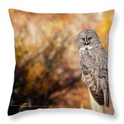 Owl 9 Throw Pillow