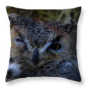 Owl Throw Pillow