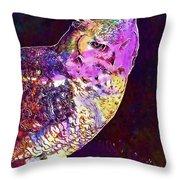 Owl Bird White Raptor  Throw Pillow