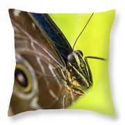 Owl Butterfly In Yellow Flower Throw Pillow