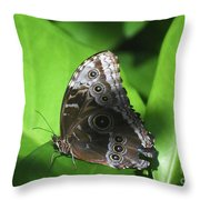 Owl Butterfly On A Cluster Of Green Leaves Throw Pillow