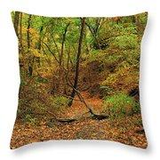 Owl Canyon In Autumn 2 Throw Pillow