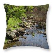 Owl Creek Throw Pillow