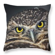 Owl Face To Face Throw Pillow