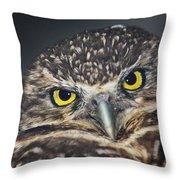Owl Face To Face Throw Pillow