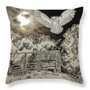 Owl In The Moonlight On Brush Mountain Throw Pillow