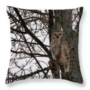 Owl In Winter Throw Pillow