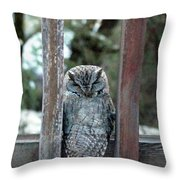 Owl On Deck Throw Pillow