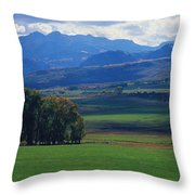 Owl Pass Uncompahgre National Forest Co Throw Pillow