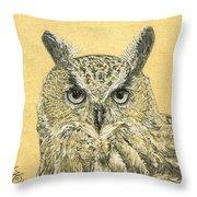 Owl Study Throw Pillow