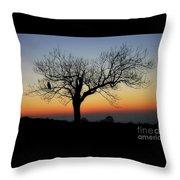 Owl Sunset Throw Pillow