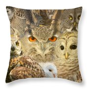 Owl You Need Is Love Throw Pillow