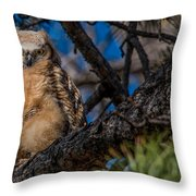 Owlet In A Fir Tree Throw Pillow