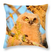 Owlet In A Spring Sunrise Throw Pillow