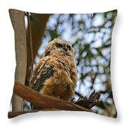 Owlet Lookout Throw Pillow