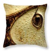 Owl's Eye Throw Pillow