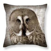 Owls Eyes -vintage Series Throw Pillow