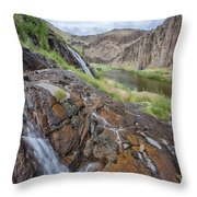 Owyhee River 1 Throw Pillow