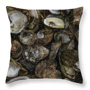 Oysters Two Throw Pillow