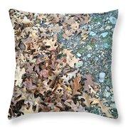 Ozark Autumn Throw Pillow