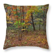 Ozark Forest In Fall 1 Throw Pillow