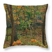 Ozark Forest In Fall 2 Throw Pillow