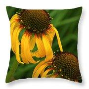 Ozark Yellow Coneflowers Throw Pillow