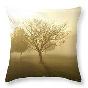 Ozarks Misty Golden Morning Sunrise Throw Pillow