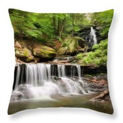 Ozone Falls Ricketts Glen Throw Pillow