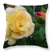 P0767 Throw Pillow