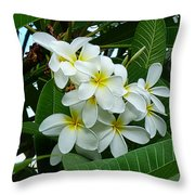 P1060051 Throw Pillow