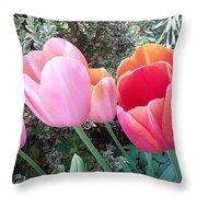 P9532 Throw Pillow
