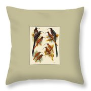 pa FB WilliamTCooper LesserBirdsOfParadise Penny Olsen Throw Pillow
