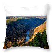 Pa Grand Canyon-pine Creek Throw Pillow