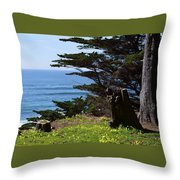 Pacific Beauty Throw Pillow