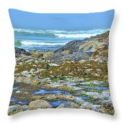 Pacific Coast Tide Pools Throw Pillow
