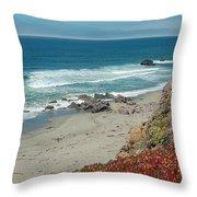 Pacific Coast View IIi Throw Pillow